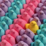 A Little Peep at Easter