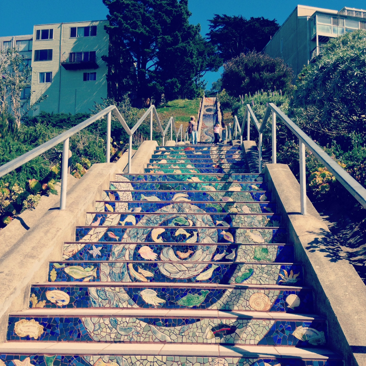 Moraga Steps, Golden Gate Heights, San Francisco.