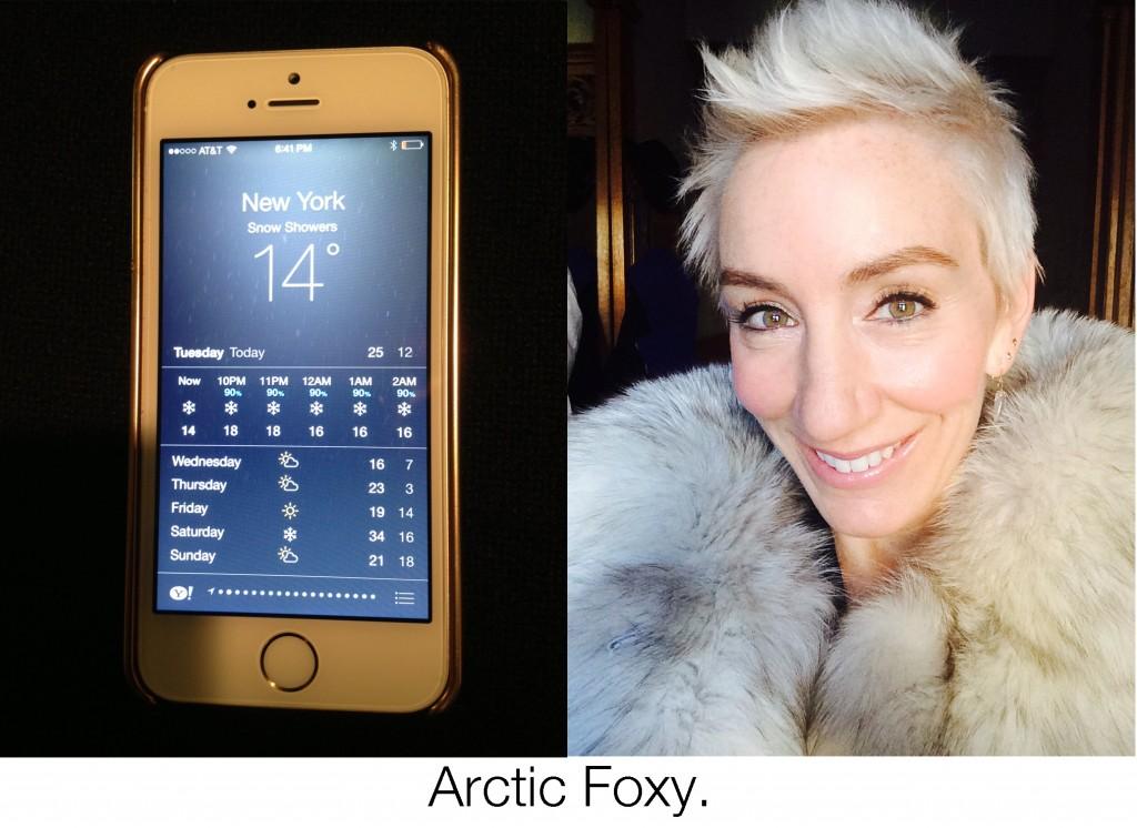 Arctic Foxy, blankstareblink.com
