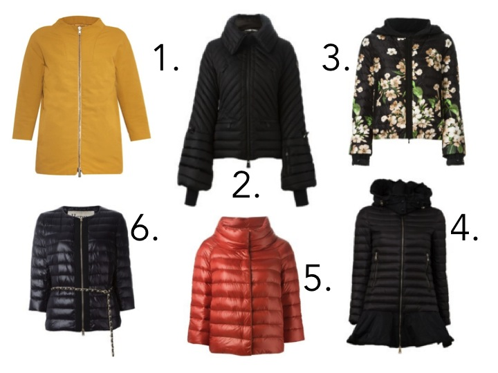 cool ski jackets Herno and Moncler